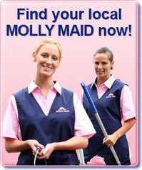 Molly Maid Blog | House & Kitchen Cleaning Tips : Ring in Holiday Baking – and Clean-up | General | Scoop.it