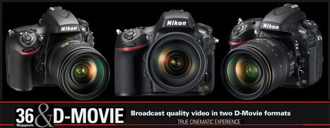 More Nikon D800 1080P video tests | FOTOGRAFIA Y VIDEO HDSLR PHOTOGRAPHY & VIDEO | Scoop.it