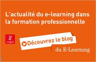 L'apprenant rêvé des MOOCs | Le blog de la Formation professionnelle et continue | moocs | Scoop.it