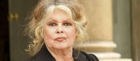 Le coup de sang de Brigitte Bardot contre Eva Joly | Mais n'importe quoi ! | Scoop.it