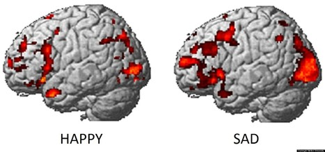 Emotions Can Be Identified From Brain Activity   What does the research say?   Scoop.it