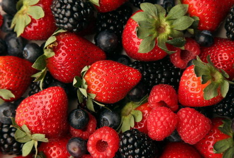 COMING WEDNESDAY: Get ready for berry-picking season with festival, recipes - Tulsa World | Food & Beverages | Scoop.it
