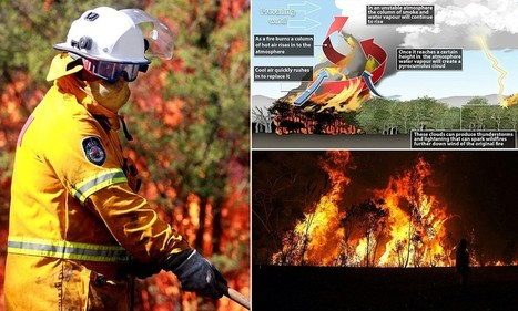 Fire cloud could form over Australia bush fires causing lightning hits   bushfires in Australia   Scoop.it