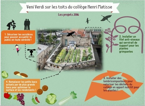 Veni Verdi, l'asso qui verdit Paris - Sécurisons le toit du collège Henri Matisse ! | Trames Vertes Urbaines | Scoop.it