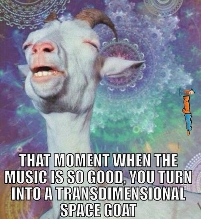 That moment when the music is so good | local online marketing | Scoop.it