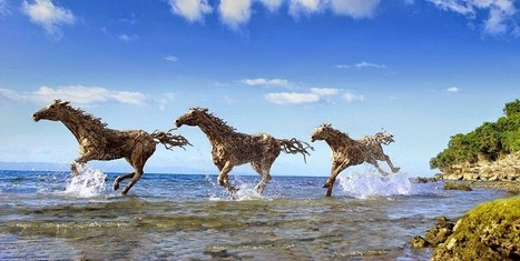An Interview with the Driftwood Sculptor James Doran-Webb - Exotic Philippines   Exotic Philippines   Scoop.it