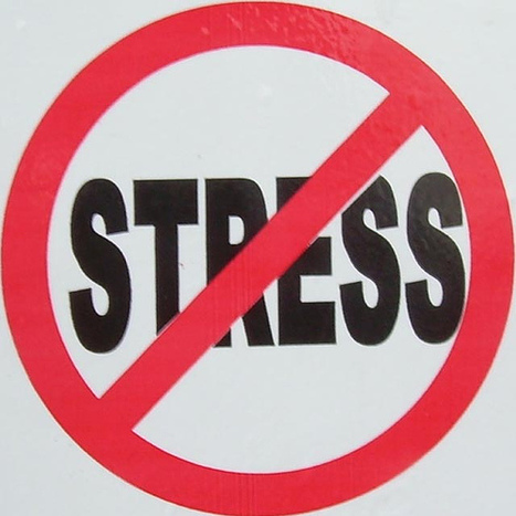 Stress Management   How can HR prevent bullying by seniors at the workplace?   Scoop.it