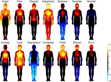 Bodily maps of emotions | Cognitive Science - Artificial Intelligence | Scoop.it