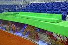 Are Aquariums Ruining Coral Reef Biodiversity? (Op-Ed) - LiveScience.com | fish | Scoop.it