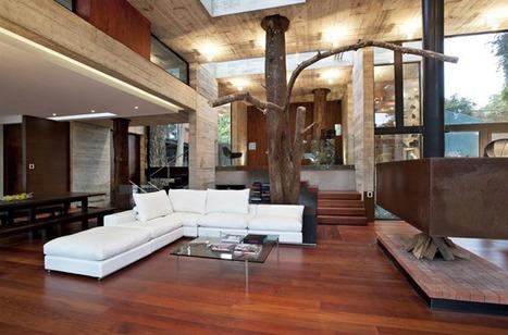 Des arbres dans la maison | Maisons insolites | Scoop.it