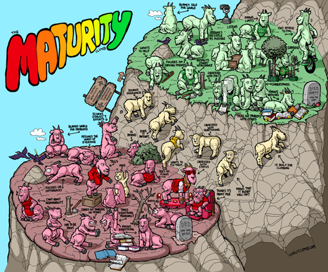 The Maturity Climb. What Is Your Way To The Crest Of The Hill? | Infographics | Scoop.it