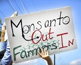 5 Million Farmers Sue Monsanto for $7.7 Billion | GMOs & FOOD, WATER & SOIL MATTERS | Scoop.it