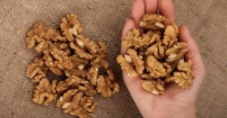 Viral Alternative News: Eat 5 Walnuts Then Wait 4 Hours: This Is What Will Happen To You! | Fitness, Health, Running and Weight loss | Scoop.it