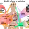 what is cause and effect of pollution in uk
