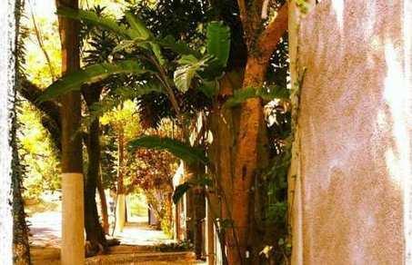 Dans quel quartier de São Paulo s'installer ? Le quartier de Sumaré | Brésil Information | Du bout du monde au coin de la rue | Scoop.it