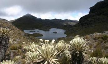 Colombia: ¿punto final a la minería en páramos? | Agua | Scoop.it