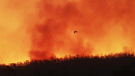 Australian Firefighters Battle Brushfires and Serial Arsonists - weather.com | Australian environment | Scoop.it