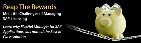 Meet the Challenges of Managing SAP Licensing and Reap the Rewards Webinar | Software License Optimization and Software Asset Management | Scoop.it