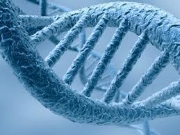 Une méthode en or pour ouvrir l'ADN en deux | Space-horizon | Neurosciences, la science qui avance | Scoop.it
