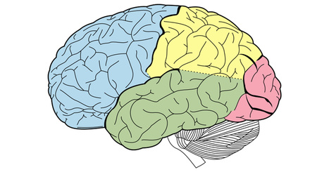 Here's How Negative Thinking is Changing Your Brain | Bhive | Scoop.it