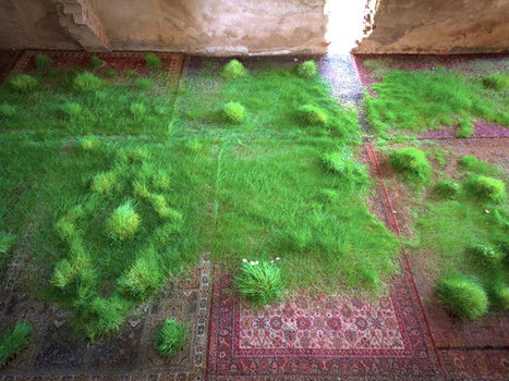 A Temporary #Lawn #Planted Amongst a #Patchwork of #Persian #Rugs #art #nature #grass #carpets | Luby Art | Scoop.it