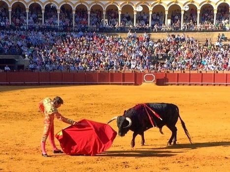 Don't Bring Google Glass to a Bullfight | Digital-News on Scoop.it today | Scoop.it