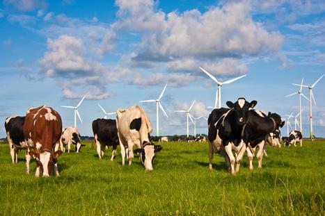 Tout savoir sur l'éolien ! | Eolien en bref | Scoop.it