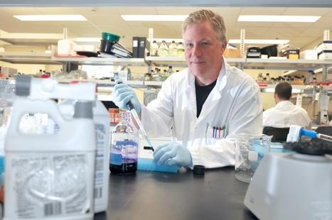 Les pesticides transforment nos gènes | Un univers de possibles... | Scoop.it