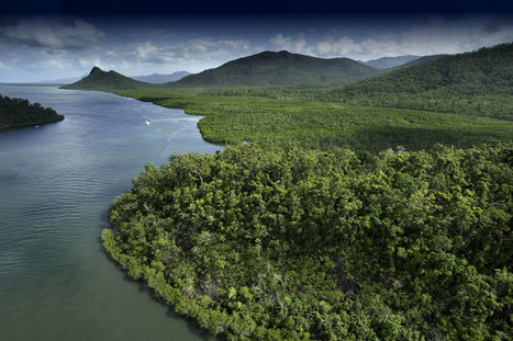 Magnetic Island Scenic Flight From Townsville | Colonial Leisure Group | Scoop.it