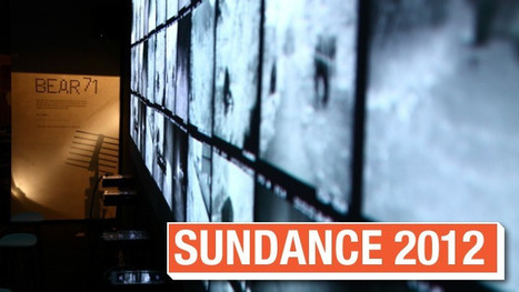 Sundance 2012: Experience the Interactive Storytelling of 'Bear 71′ With New Video   Film School Rejects   Narratology & Narremes   Scoop.it