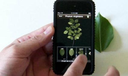 Ecco le app per coltivare orto e giardino | Coltivare l'orto | Scoop.it