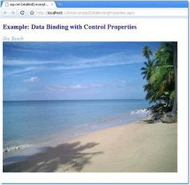 asp.net example: asp.net DataBind() example: data binding with control properties | .NET Development | Scoop.it