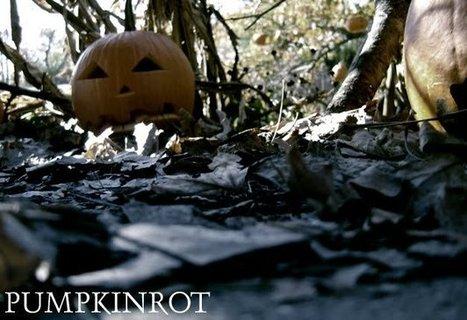 PUMPKINROT.COM: What's Brewing | Halloween & Spooky Fun Stuff~ | Scoop.it