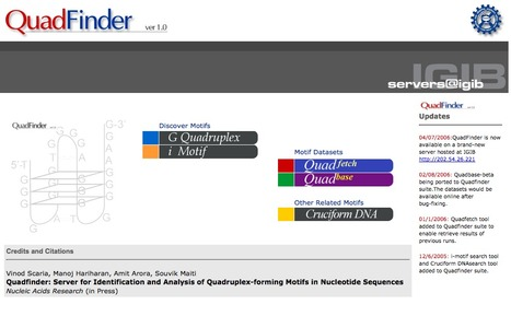 QuadFinder - An Online Server for Quadruplex Motif Search and Analysis | bioinformatics-databases | Scoop.it