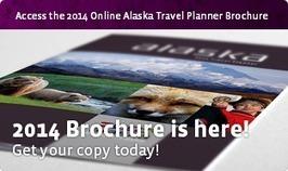 Alaska Denali Travel Planning & Vacation Packages in Denali National Park, Anchorage Alaska & More | Trees | Scoop.it