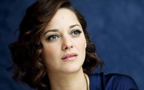 Divorce Brad Pitt et Angelina Jolie:Marion Cotillard réagit aux rumeurs et annonce sa grossesse   SEN360.FR   Actualité au Sénégal   Scoop.it