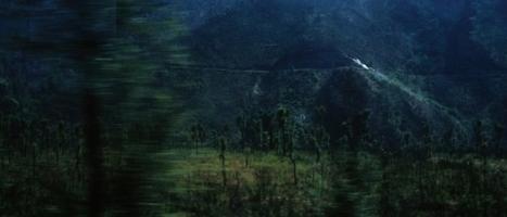 Cutting Edge | Harrison Birtwistle, 'Complete string quartets' - AECD 1217 | Aeon | Scoop.it