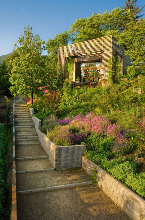 40 Pergola Design Ideas Turn Your Garden Into a Peaceful Refuge   DesignRulz   Decorating Ideas - Home Design Ideas   Scoop.it