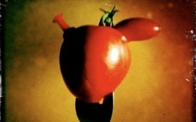 tous locavores ? / le mouv' | agriculture, alimentation et autres fables | Scoop.it