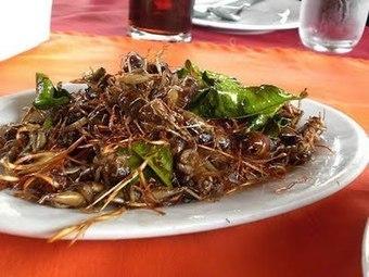 D´Clase Gourmet: Grillos y Gusanos, la esperanza de los niños malnutridos del Mundo | Entomophagy: Edible Insects and the Future of Food | Scoop.it