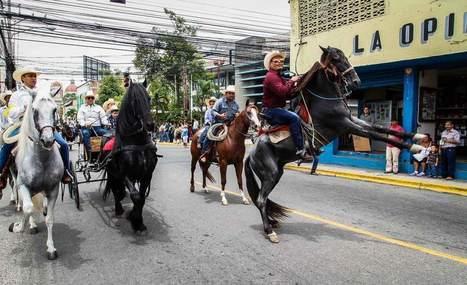Desfile de caballos purasangres engalana la Feria - La Prensa de Honduras | Caballo, Caballos | Scoop.it