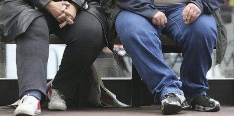 Et si l'obésité devenait la norme en Europe? | T3 - Santé, sport, alimentation | Scoop.it