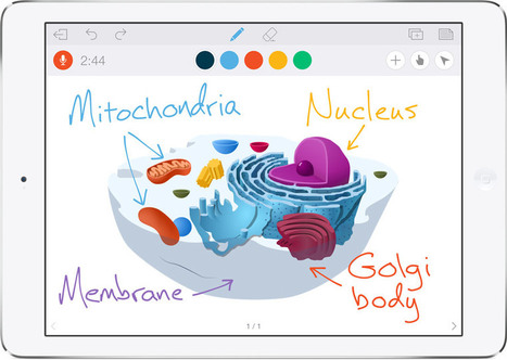 Educreations, app para iPad para crear vídeos educativos | e-Learning, Diseño Instruccional | Scoop.it