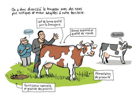 L'agriculture paysanne expliquée aux urbains BD en PDF | Agroécologie | Scoop.it