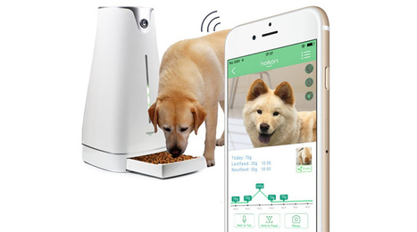Hoison – All for happiness | Quantified Pet | Scoop.it