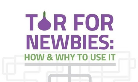 Tor for Newbies: How and Why to Use It - infographic - Infographic Online | 911branding | Scoop.it