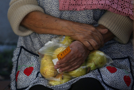 Digital Food Stamps Could Help Solve SNAP Problems   Business News & Finance   Scoop.it