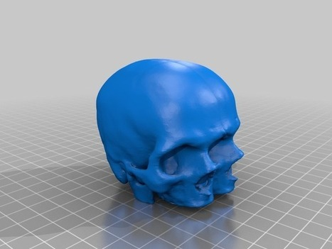 Triclops Baby Skull by fredini - Thingiverse | Product Design | Scoop.it