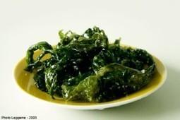 Les algues pourraient peut-être bien remplacer la viande! | ISR, DD et Responsabilité Sociétale des Entreprises | Scoop.it