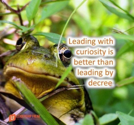 """The """"Better"""" Question Changes Everything   Leadership Primer   Scoop.it"""
